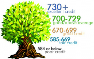 10 Tips for Improving Credit Score